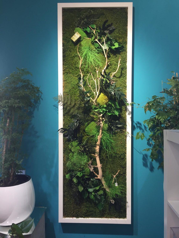 Fiori e piante stabilizzati, ecco cosa sono